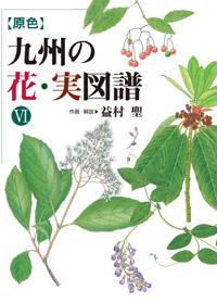原色 九州の花・実図譜 Ⅵ